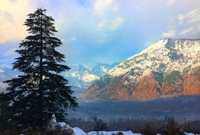 Top Things To Do in Manali