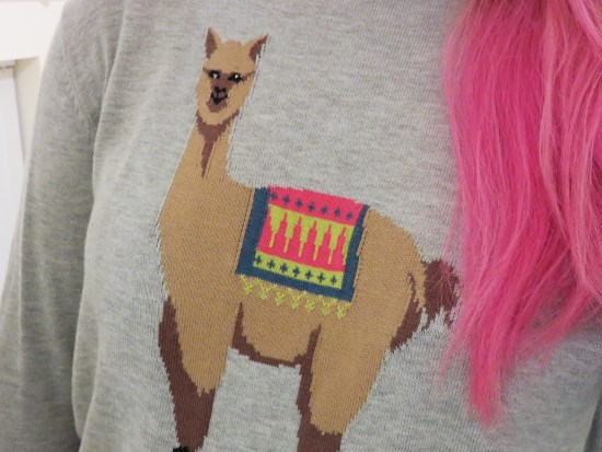 Llama Jumper - autumn fashion