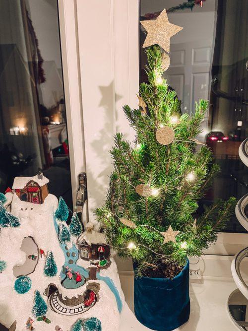 Bloom & Wild mini letterbox Christmas tree
