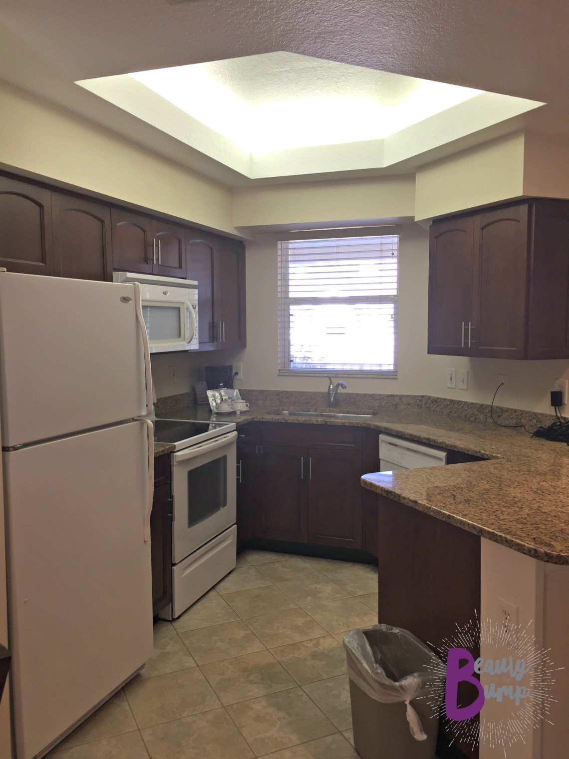Sheraton Vistana Resort Villas Lake Buena Vista Orlando_Kitchen