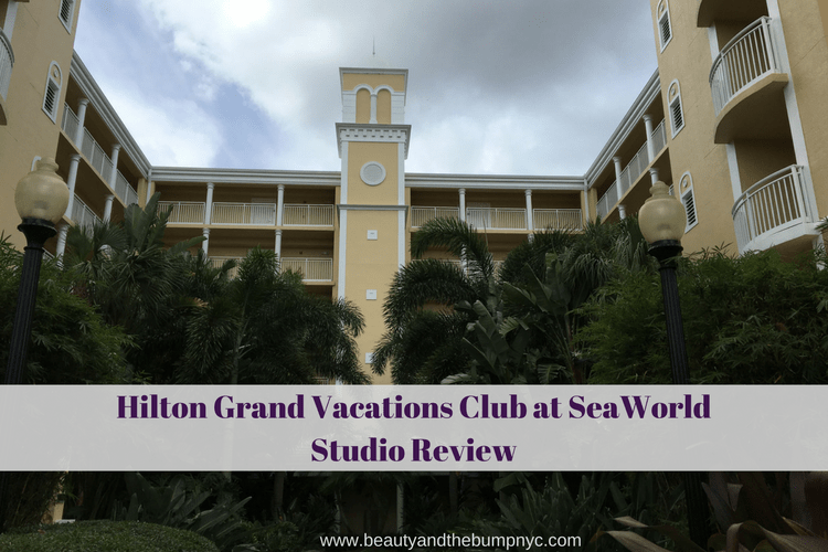 Hilton Grand Vacations Club at SeaWorld - Studio Review