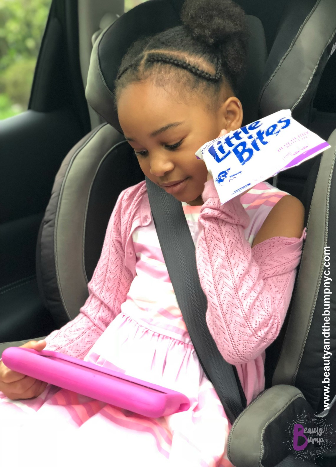 Safe Car Food Little bites