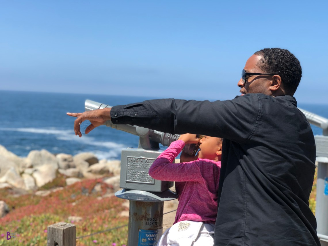 7-Mile Drive is a great family activity to do during a California Family Vacation