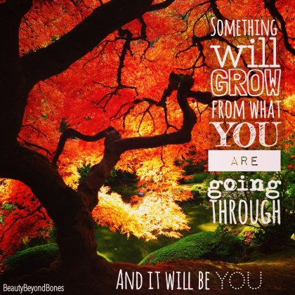 Something will grow from what you are going through, and it will be you. - BeautyBeyondBones From her MUST READ post, Ten Year Challenge #10yearchallenge #edrecovery #recovery #faith #catholic #quotes