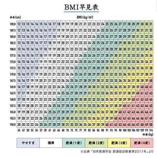 BMI グラフ