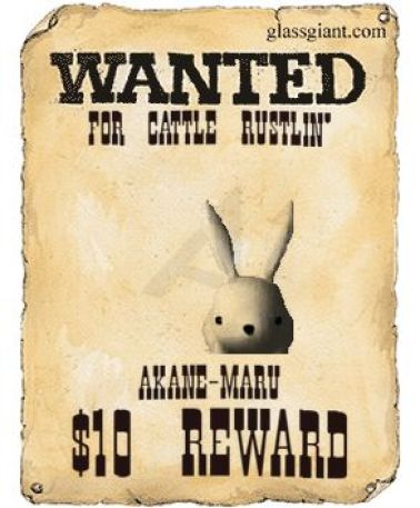 misc_wanted_poster_i_php