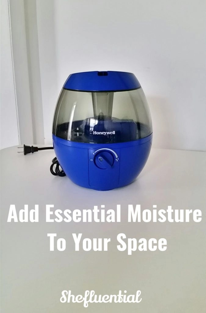 Add Essential Moisture To Your Space