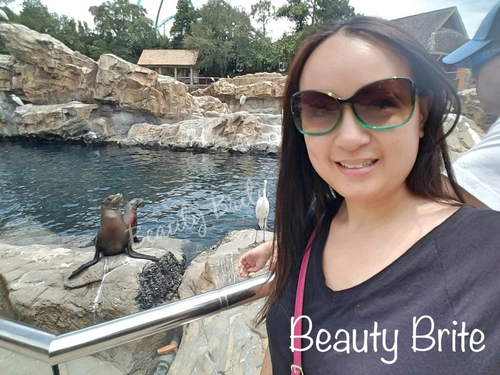 SeaWorld Orlando Sea Lion Selfie