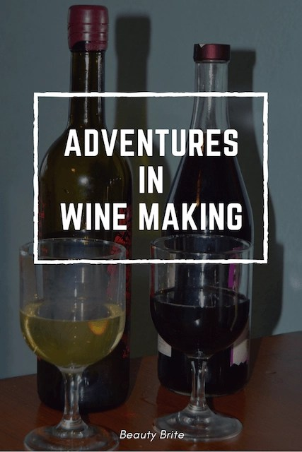 Adventures in Wine Making