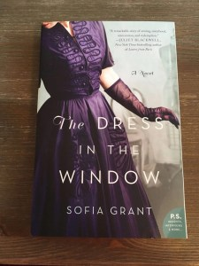 The Dress in the Window Front Cover of Novel
