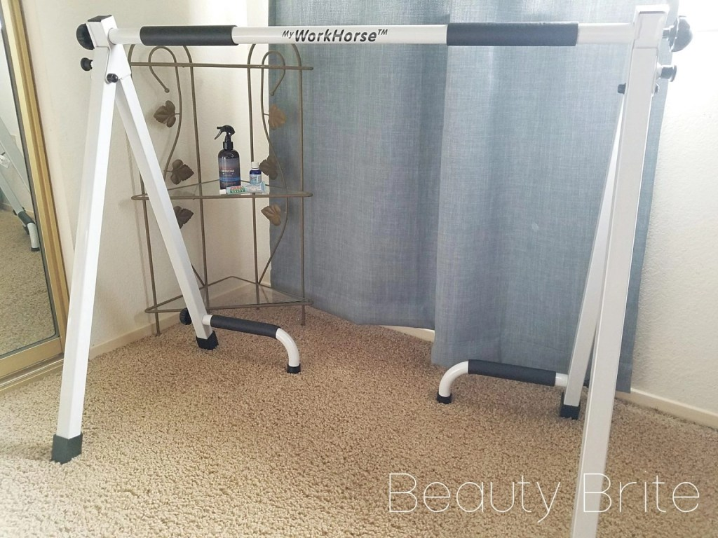 Dr. Len's Portable Pull-up Bar