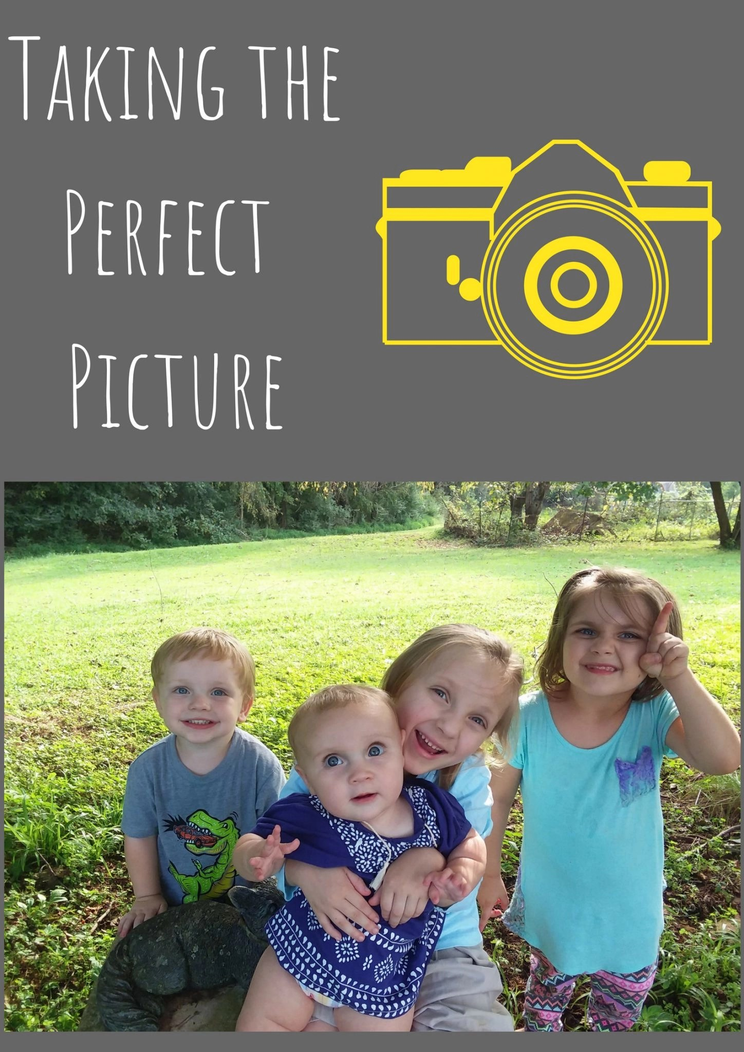 Taking the Perfect Picture