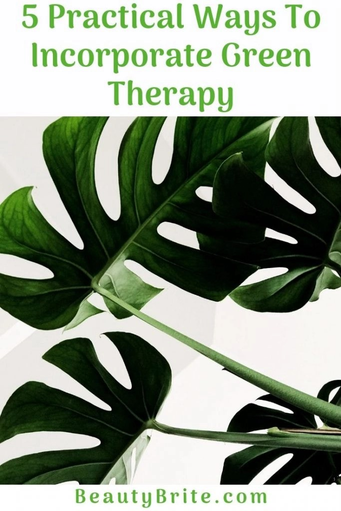 5 Practical Ways To Incorporate Green Therapy