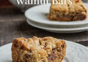 Chocolate Chip Walnut Bars