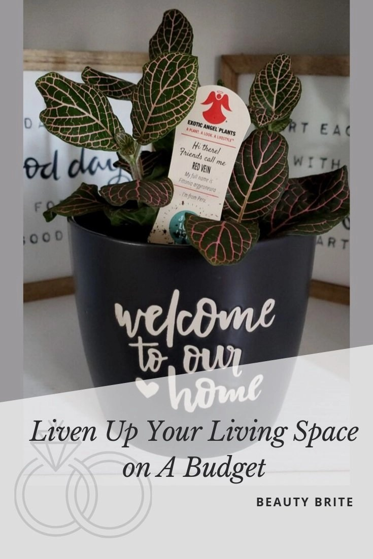 Liven Up Your Living Space On A Budget