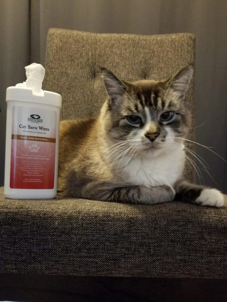 Whyte Gate - Cat Bath Wipes With Catnip Oil