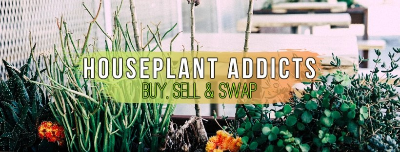 Houseplant Addicts Buy, Sell, and Swap FB Group