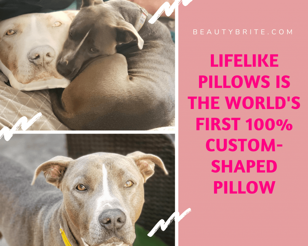 Happy Dog- LifeLike Pillows is the world's first 100% custom-shaped pillow that allows you to turn your favorite images into a double-sided, ultra-soft, realistic pillow.