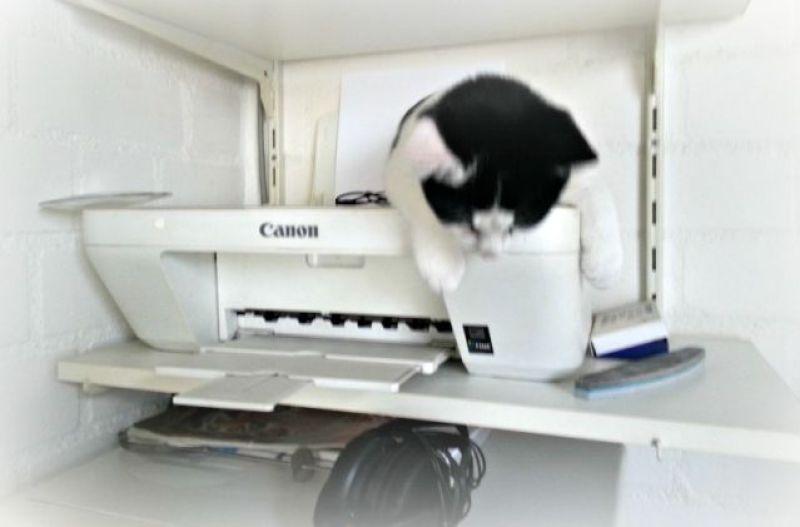 hangen-op-de-printer