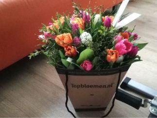 bloemen claudia