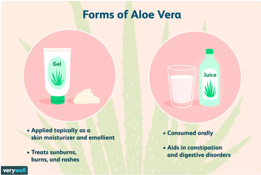 Aloe Vera Benefits You Have Least Likely Heard Of