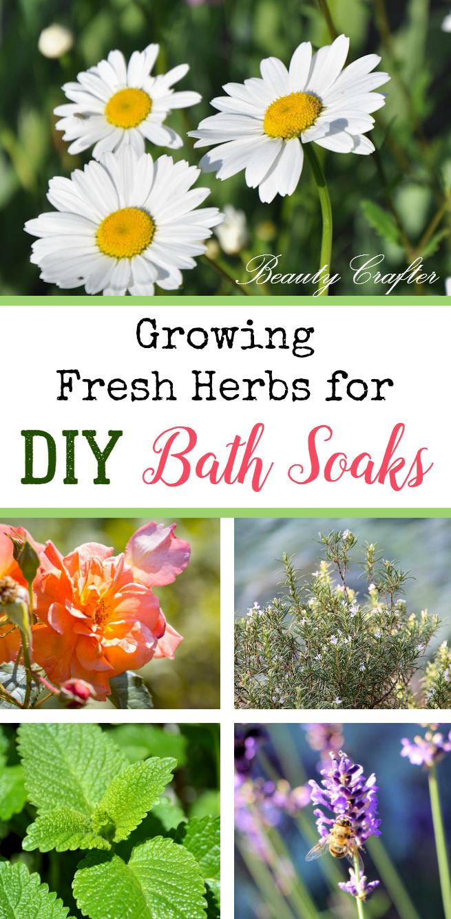 Growing Fresh Herbs for DIY Bath Soaks