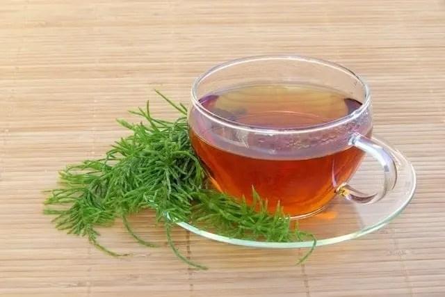 horsetail, horsetail plant, horsetail plant oil, horsetail herb, horsetail tea, horsetail juice