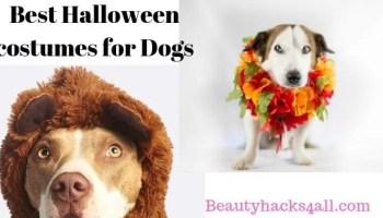 35 Unique toddler Halloween Costumes 2019 - Beautyhacks4all
