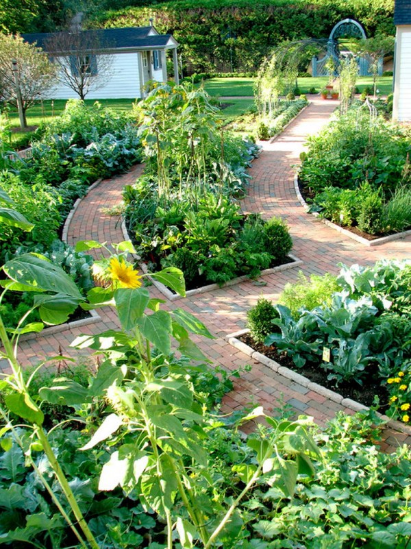 top ideas garden summer