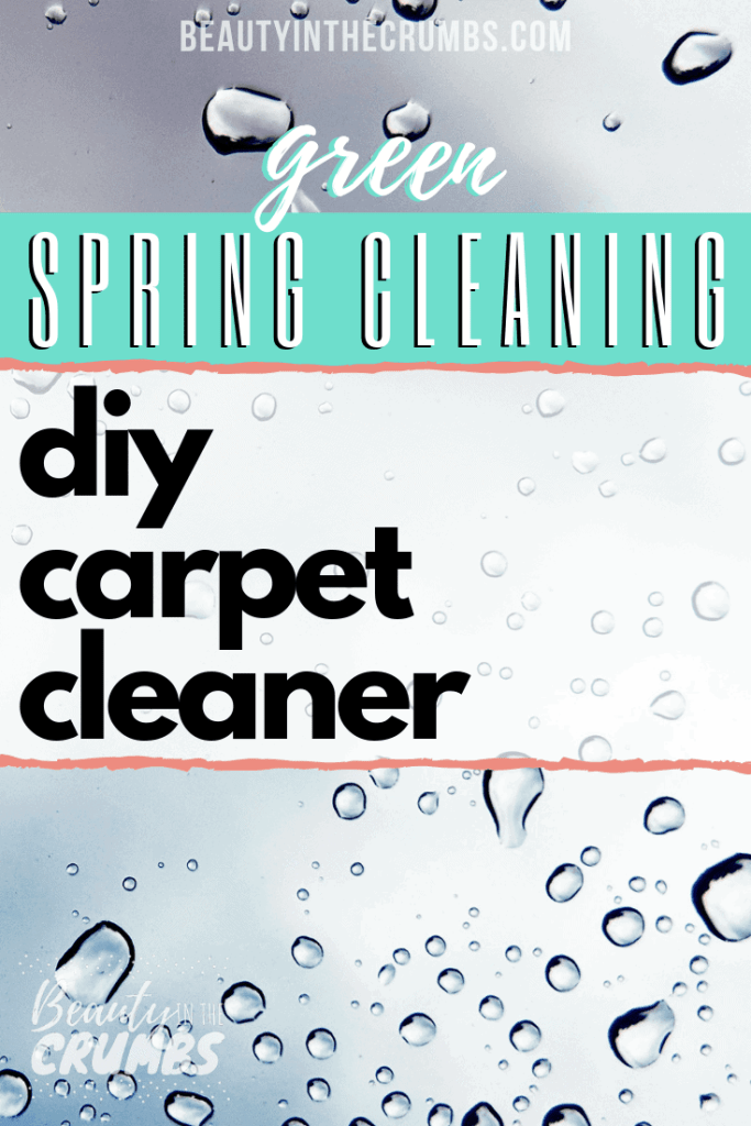 A simple, natural, and non toxic DIY homemade Dry Carpet Cleaner to lift stains, deodorize, and kill built up bacteria.
