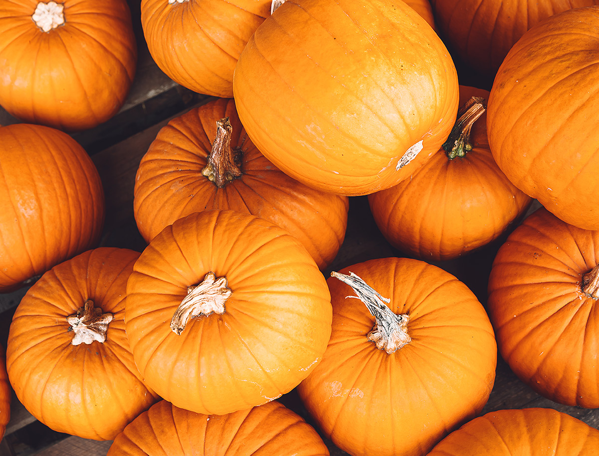 DIY Roasted Pumpkin Seeds
