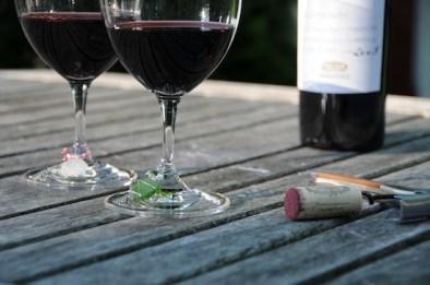2_Wine_Charms
