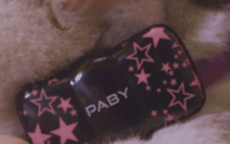 Paby Dog Tracking Device