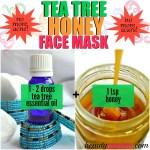 Healing Acne: Tea Tree Oil Face Mask Recipes
