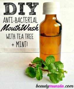 DIY Mint Tea Tree Mouthwash Recipe with Xylitol