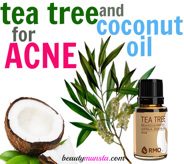 tea-tree-coconut-oil-for-acne