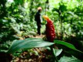 Amboro national parque (8)