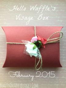 Subscription Sunday Visage Box Waffle-february