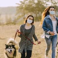 Pies w koronie - ogólnopolska akcja miłośników czworonogów