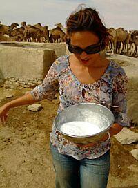 camel milk1