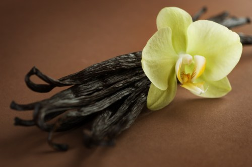 Beautiful Vanilla