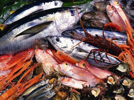 Beauty-Routine-Sergio-Colantuoni-pesce