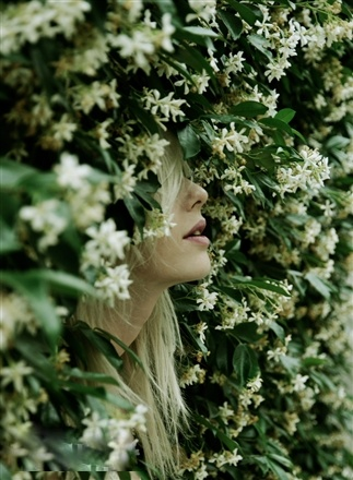 perfume-questionnaire-louis-sansa-santa-eulalia-gelsomino