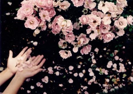 profumo-Eau-Plurielle-Diptyque-rosa