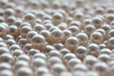 Japanese akoya cultured pearls are pictured at Ohata pearl industry in Ise, western Japan