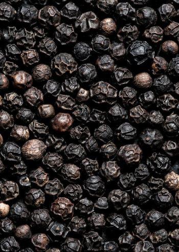Marni-Spice-pepe-nero