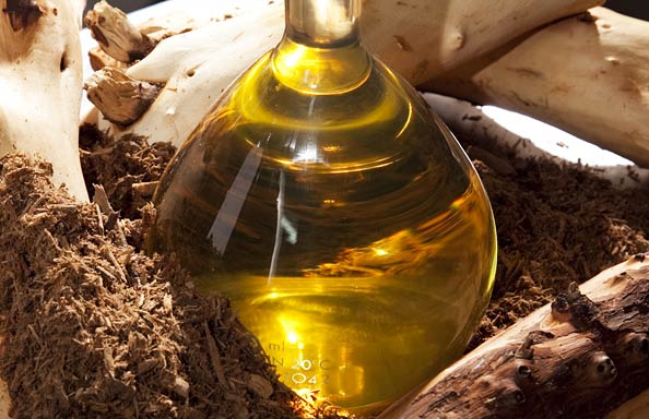 perfume-questionnaire-Céline Verleure-sandalwood-oil