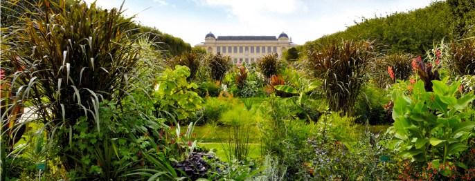jardin-des-plantes-jerome-munier_0