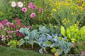 Découverte des plantes auxiliaires au jardin Oasis @ Jardin Oasis | Beauvais | Hauts-de-France | France