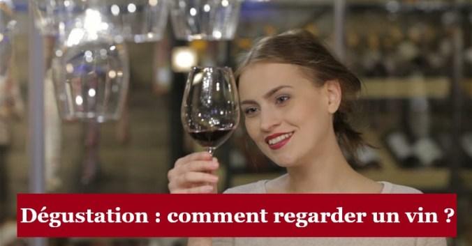 blog vin Beaux-vins oenologie dégustation regarder vins